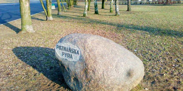 Pomnik pyry
